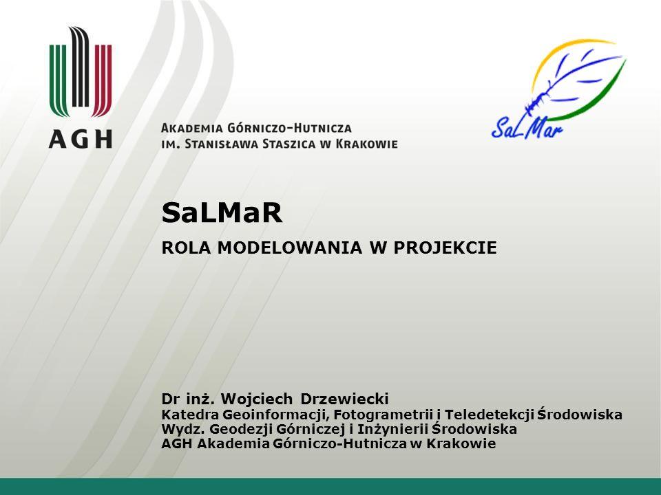SaLMaR ROLA MODELOWANIA W PROJEKCIE