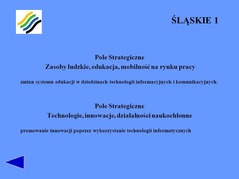Zasoby ludzkie, edukacja, mobilność na rynku pracy