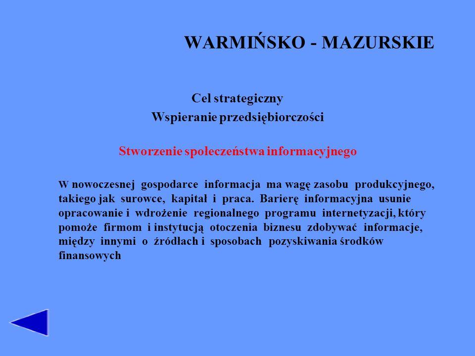 Wspieranie przedsiębiorczości Stworzenie społeczeństwa informacyjnego