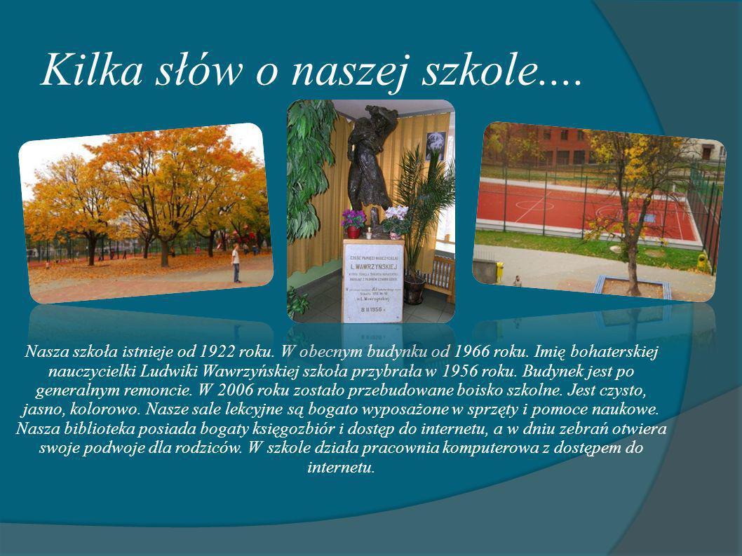Kilka słów o naszej szkole....