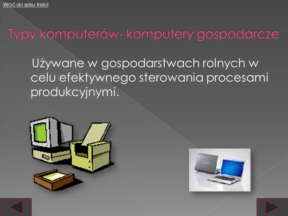 Typy komputerów- komputery gospodarcze