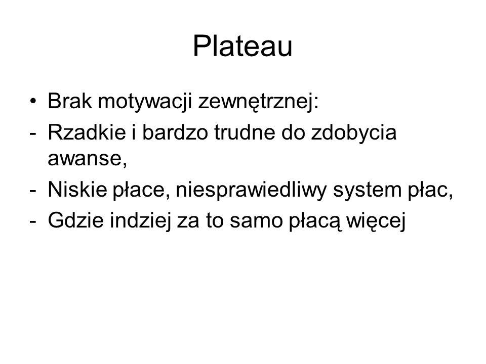 Plateau Brak motywacji zewnętrznej:
