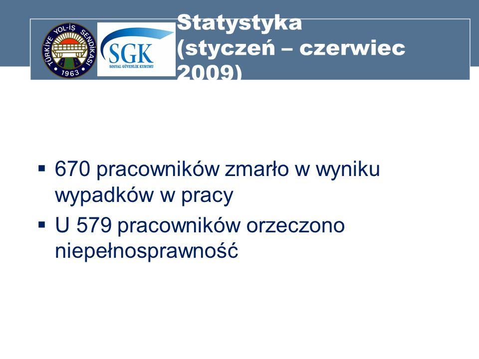 Statystyka (styczeń – czerwiec 2009)