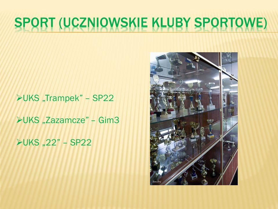 Sport (uczniowskie kluby sportowe)