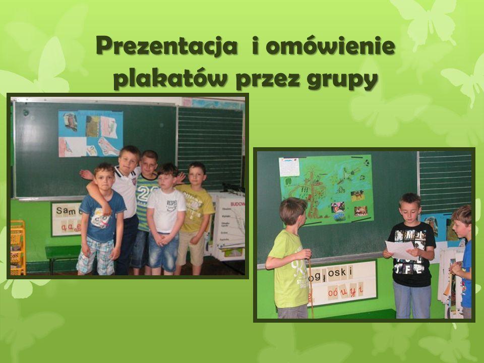 Prezentacja i omówienie plakatów przez grupy