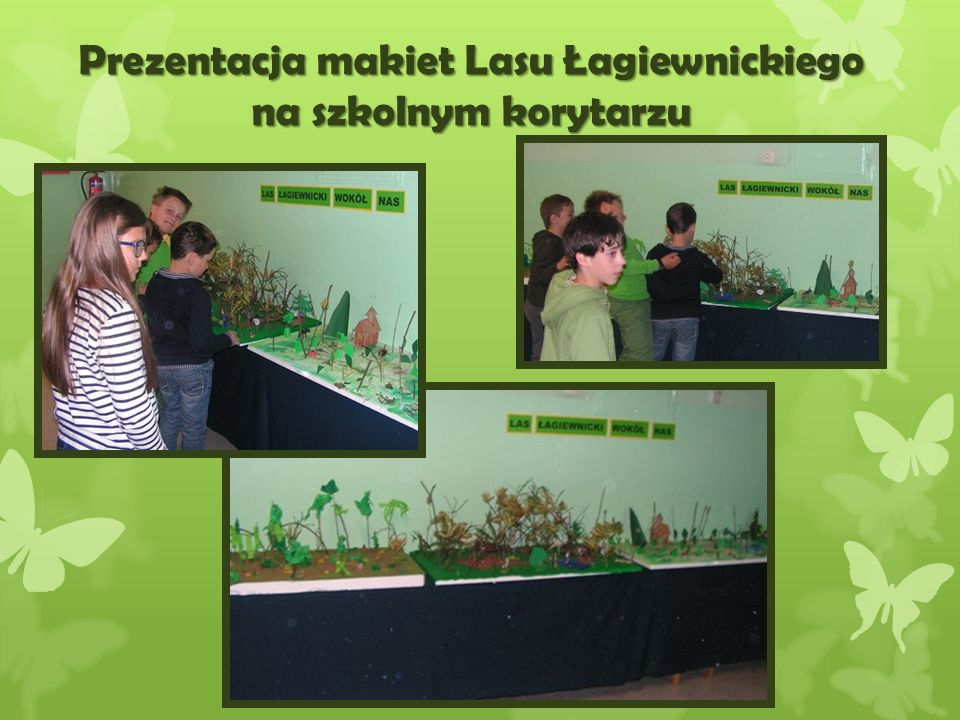 Prezentacja makiet Lasu Łagiewnickiego na szkolnym korytarzu