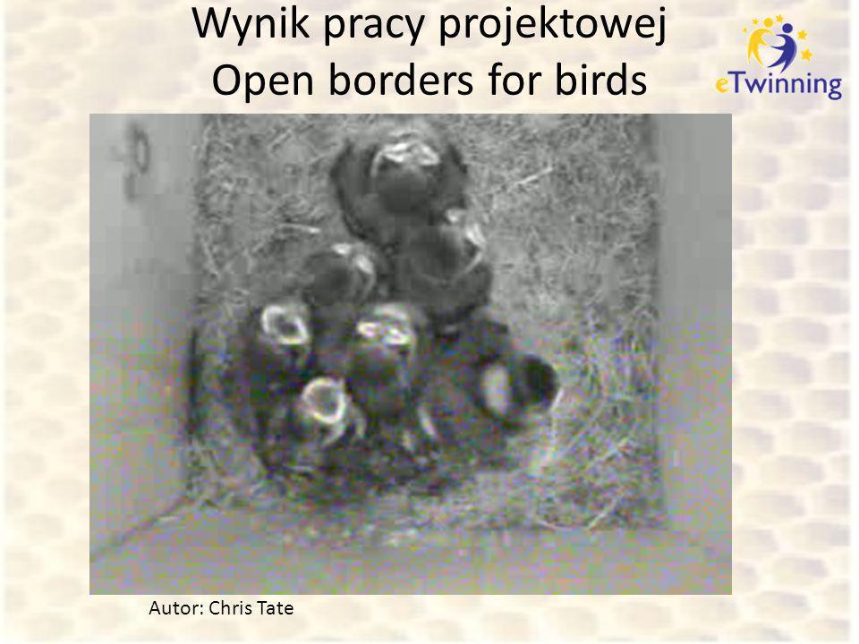 Wynik pracy projektowej Open borders for birds