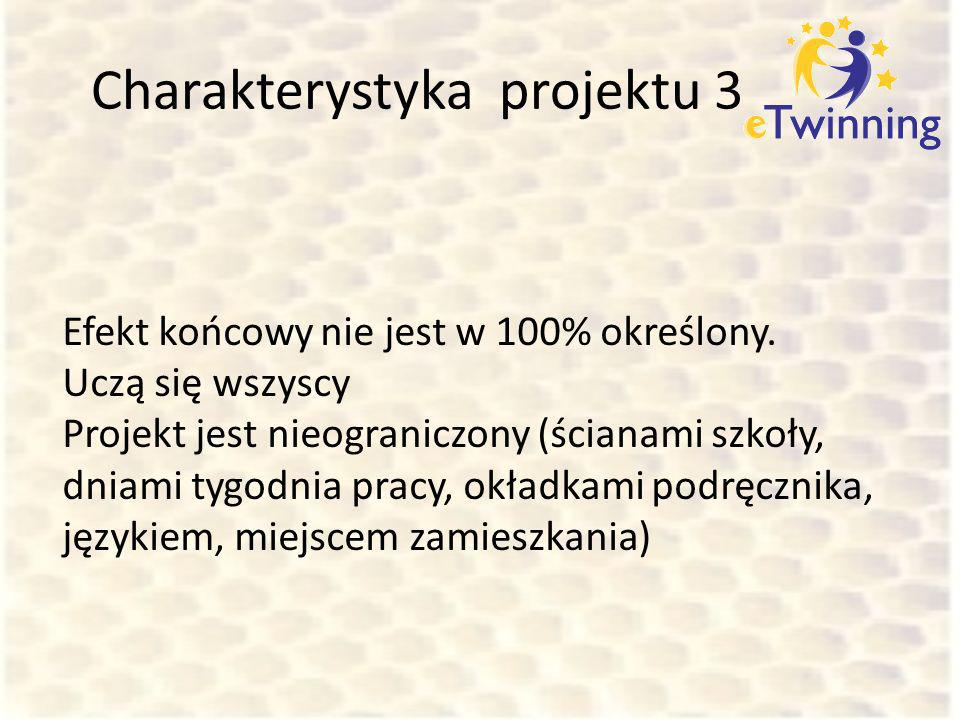 Charakterystyka projektu 3