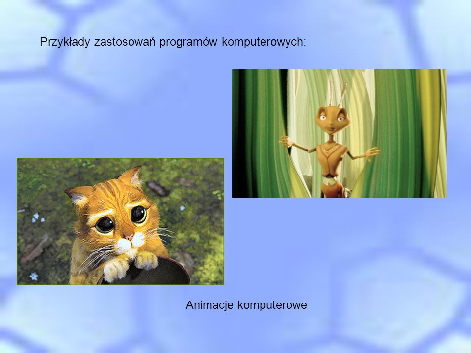 Przykłady zastosowań programów komputerowych: