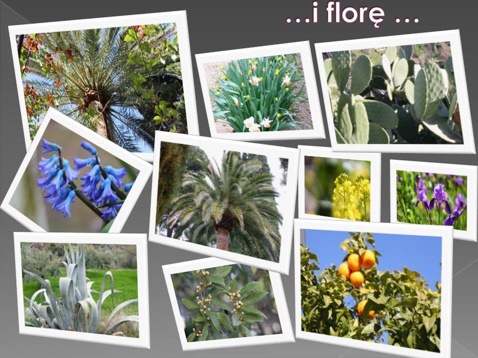…i florę …