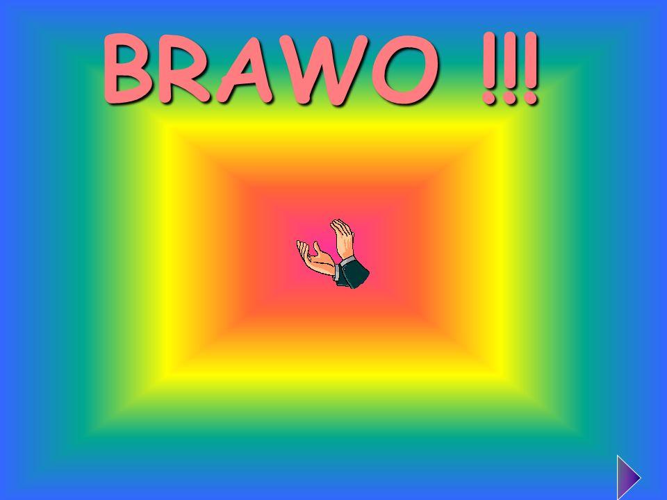 BRAWO !!!