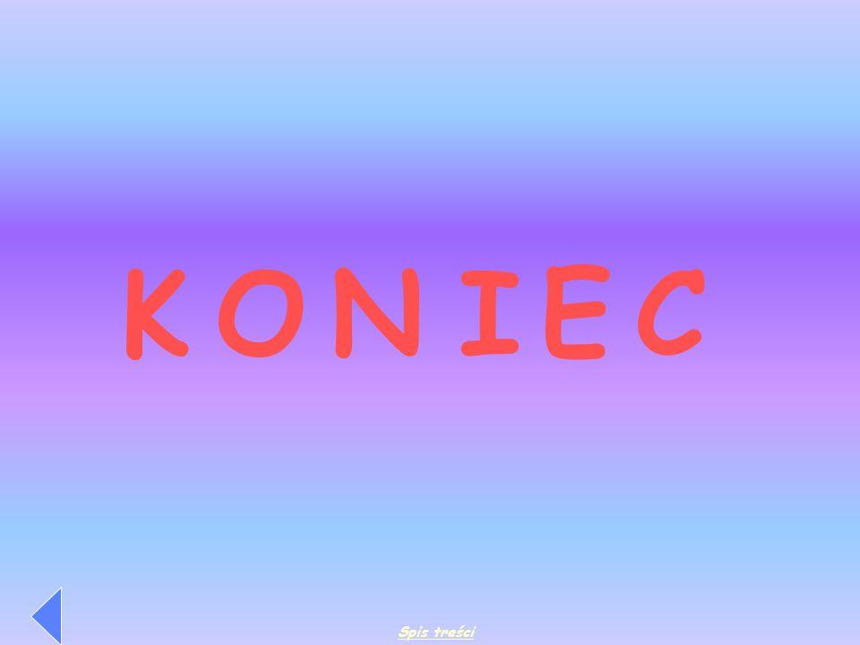 K O N I E C Spis treści