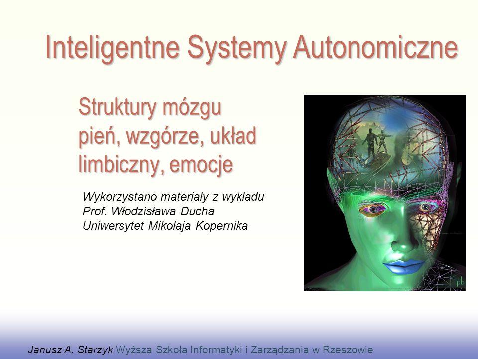 Struktury mózgu pień, wzgórze, układ limbiczny, emocje