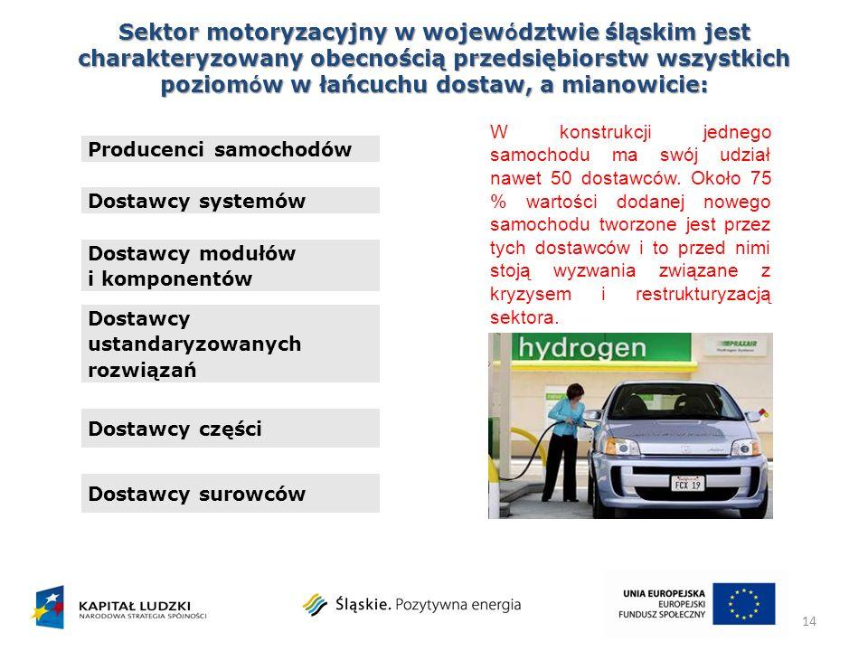 Sektor motoryzacyjny w województwie śląskim jest charakteryzowany obecnością przedsiębiorstw wszystkich poziomów w łańcuchu dostaw, a mianowicie: