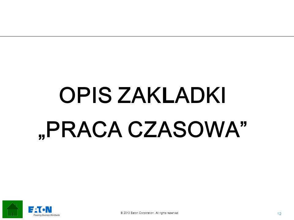 """OPIS ZAKLADKI """"PRACA CZASOWA"""