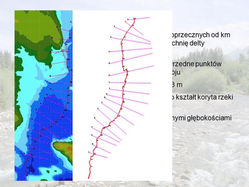 Metodyka Na mapie numerycznej założono 18 przekrojów poprzecznych od km 67+460 do km 78+477 charakteryzujących powierzchnię delty środkowej.