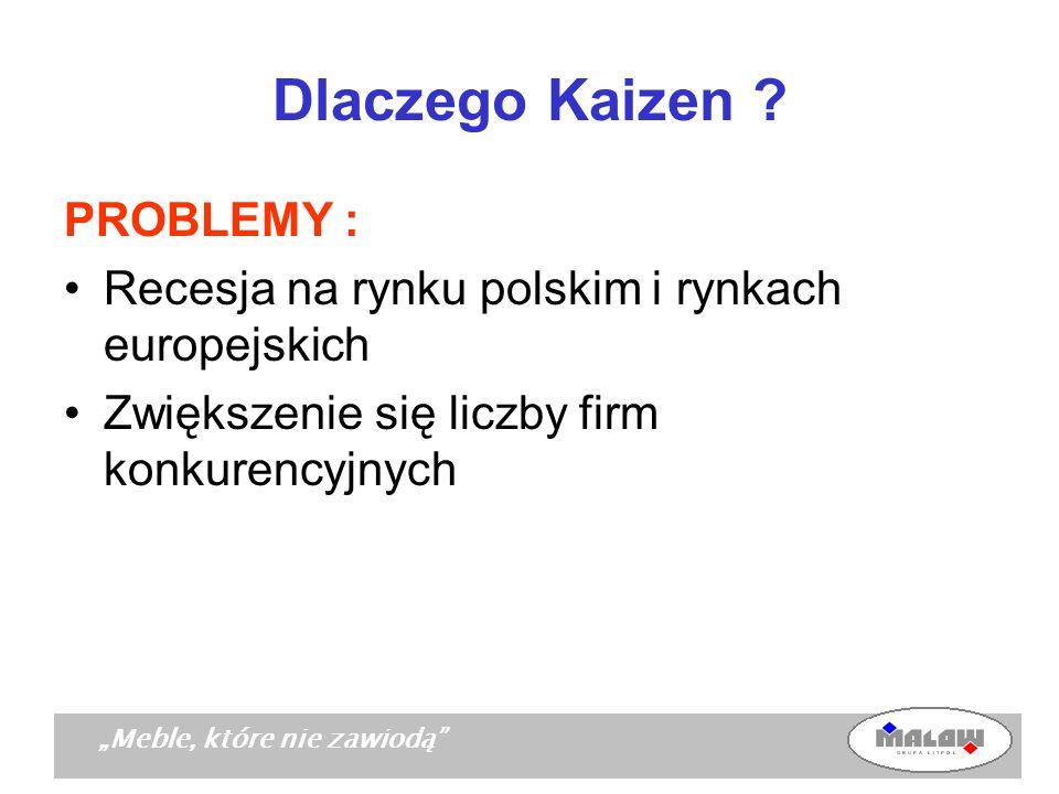 Dlaczego Kaizen PROBLEMY :