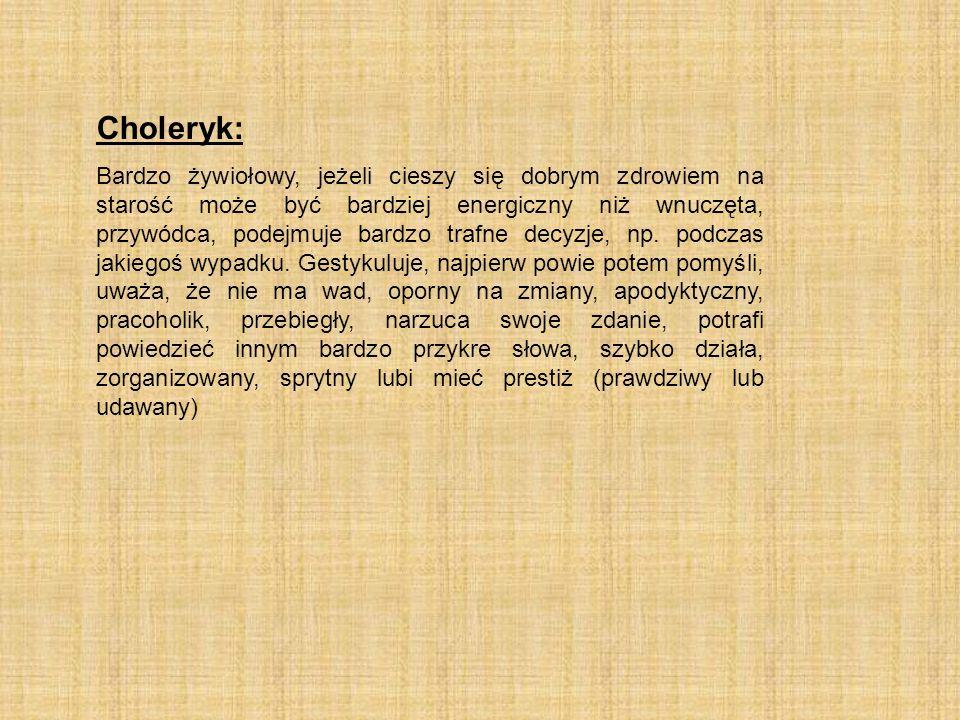 Choleryk: