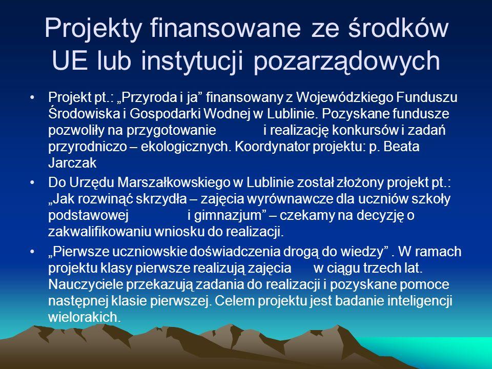Projekty finansowane ze środków UE lub instytucji pozarządowych