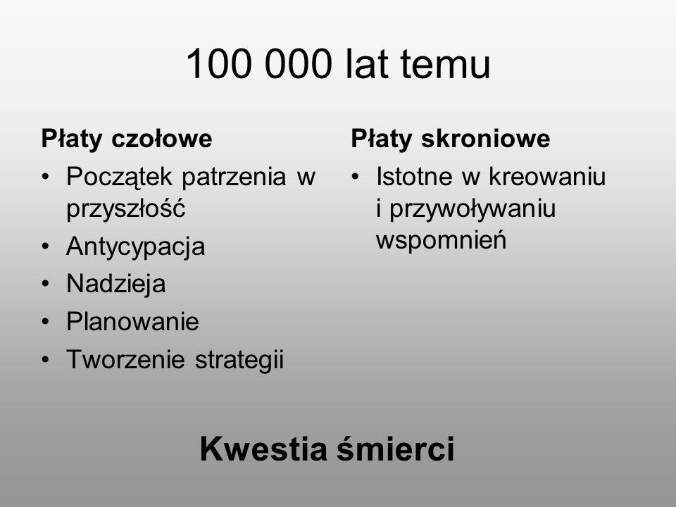100 000 lat temu Kwestia śmierci Płaty czołowe