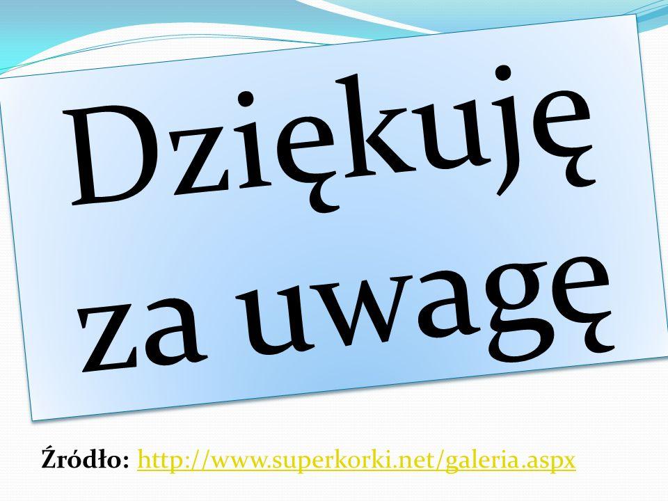 Dziękuję za uwagę Źródło: http://www.superkorki.net/galeria.aspx