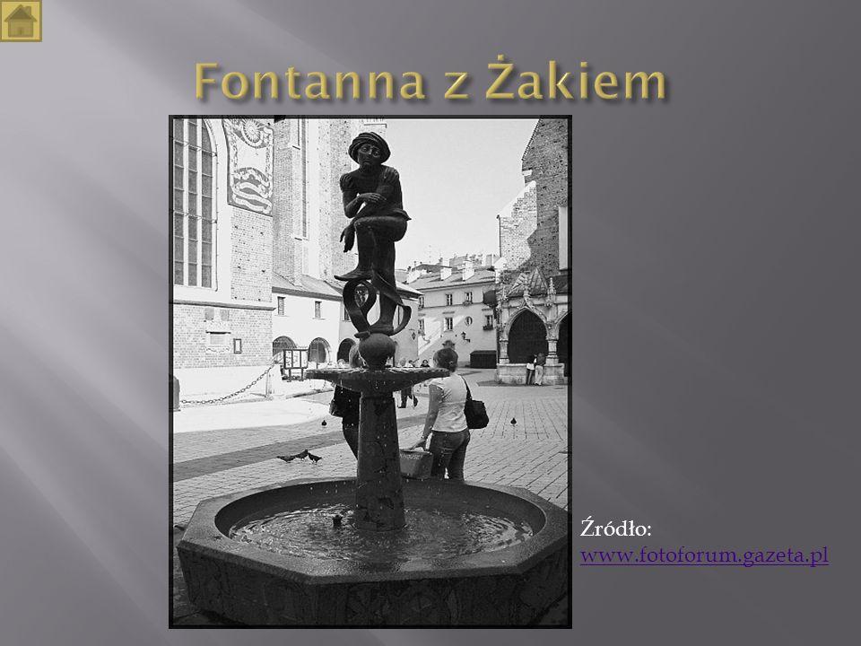 Fontanna z Żakiem Źródło: www.fotoforum.gazeta.pl