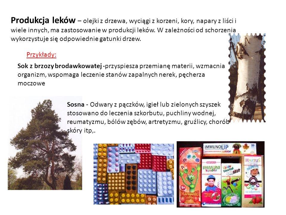 Produkcja leków – olejki z drzewa, wyciągi z korzeni, kory, napary z liści i wiele innych, ma zastosowanie w produkcji leków. W zależności od schorzenia wykorzystuje się odpowiednie gatunki drzew.
