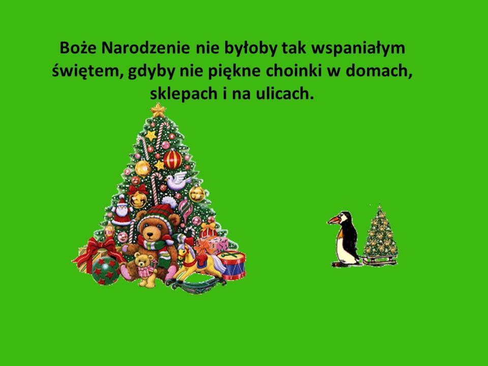 Boże Narodzenie nie byłoby tak wspaniałym świętem, gdyby nie piękne choinki w domach, sklepach i na ulicach.