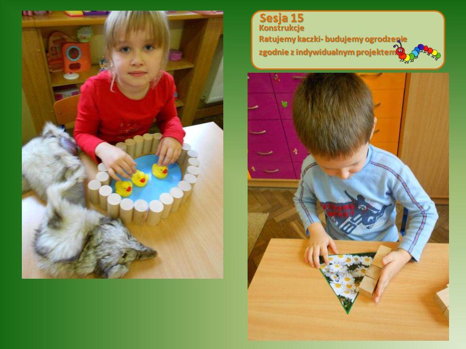 Sesja 15 Konstrukcje Ratujemy kaczki- budujemy ogrodzenie zgodnie z indywidualnym projektem