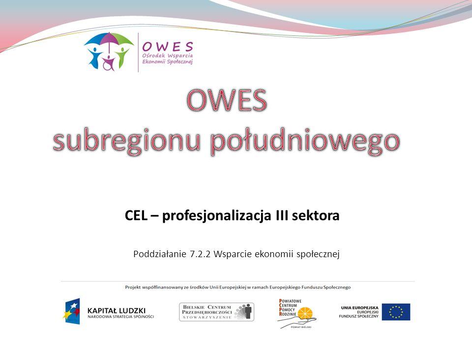 OWES subregionu południowego