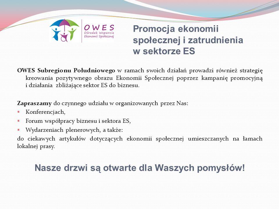 Promocja ekonomii społecznej i zatrudnienia w sektorze ES