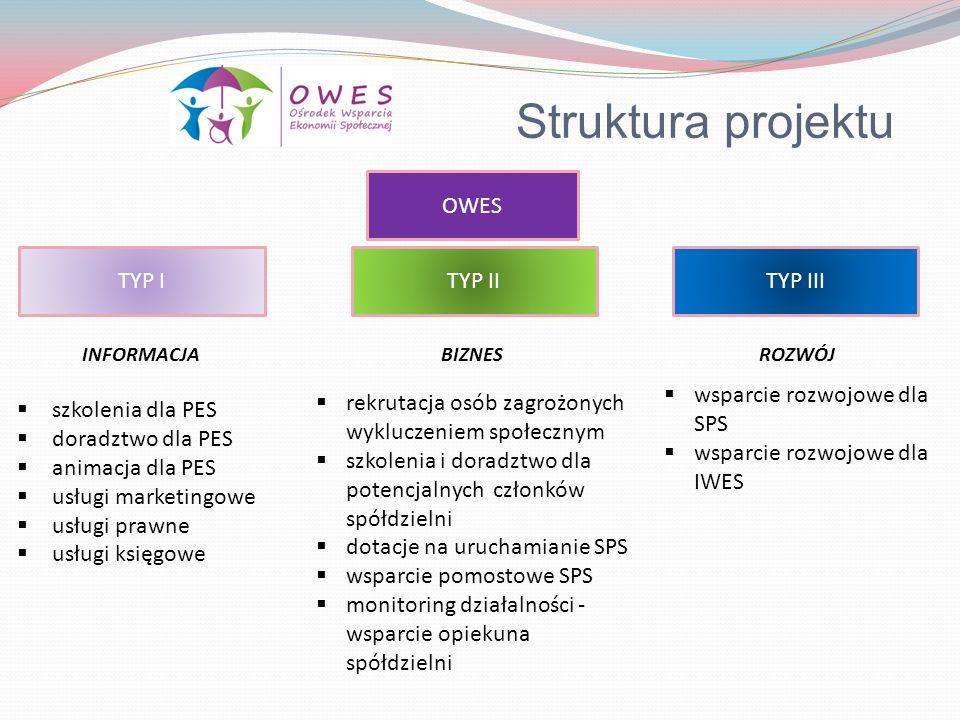 Struktura projektu OWES TYP I TYP II TYP III