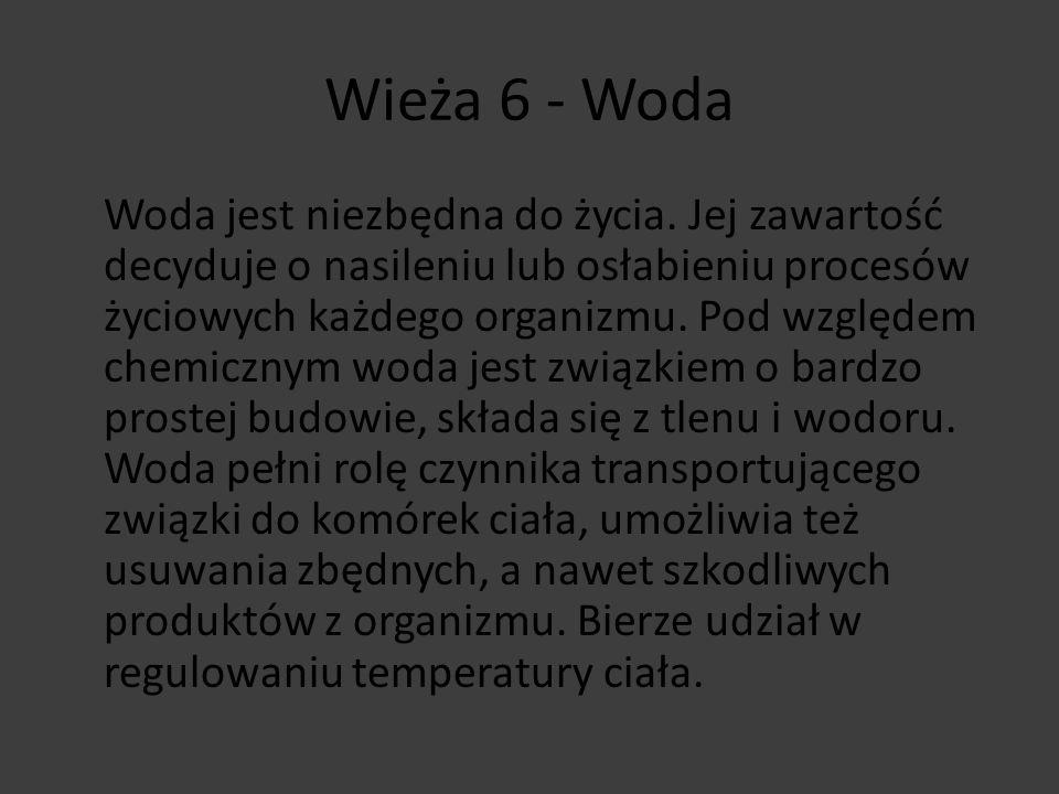 Wieża 6 - Woda