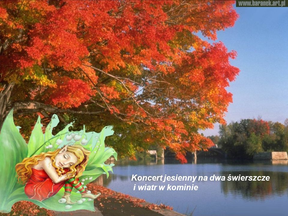 Koncert jesienny na dwa świerszcze