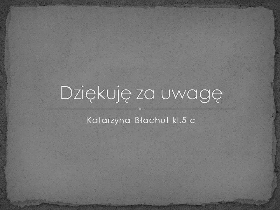Dziękuję za uwagę Katarzyna Błachut kl.5 c