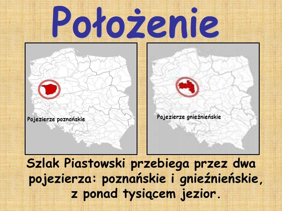 Położenie Pojezierze gnieźnieńskie. Pojezierze poznańskie.