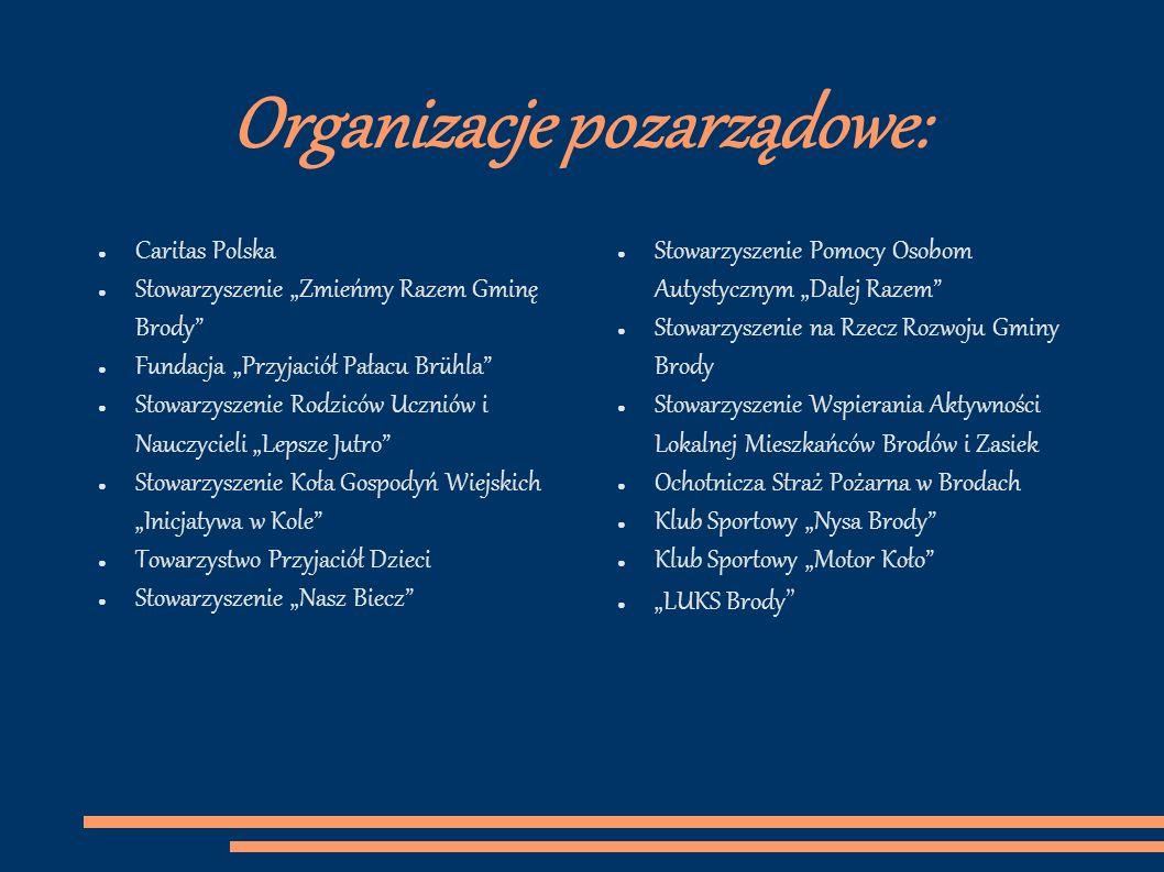 Organizacje pozarządowe:
