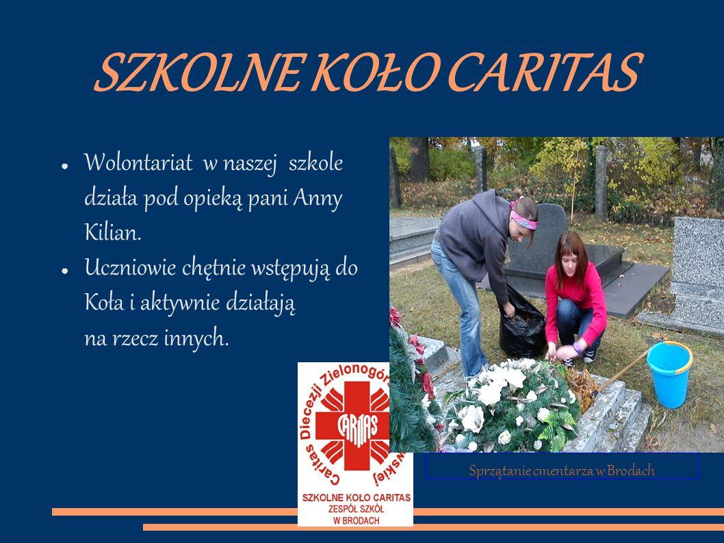 Sprzątanie cmentarza w Brodach