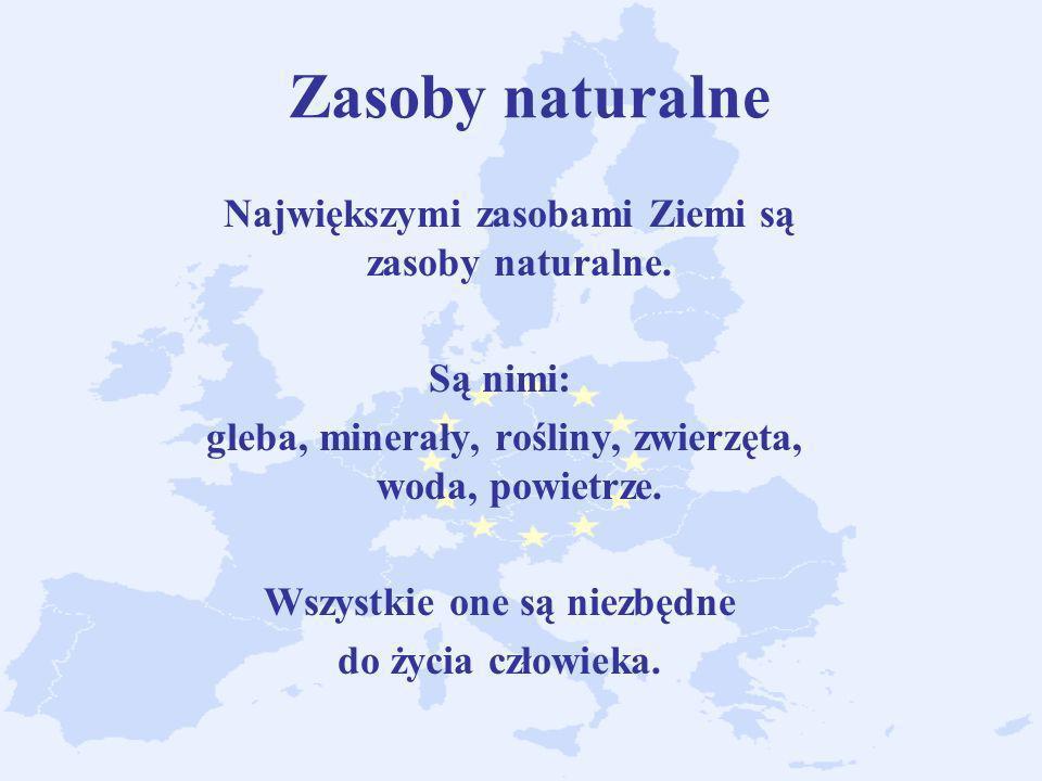 Zasoby naturalne Największymi zasobami Ziemi są zasoby naturalne.