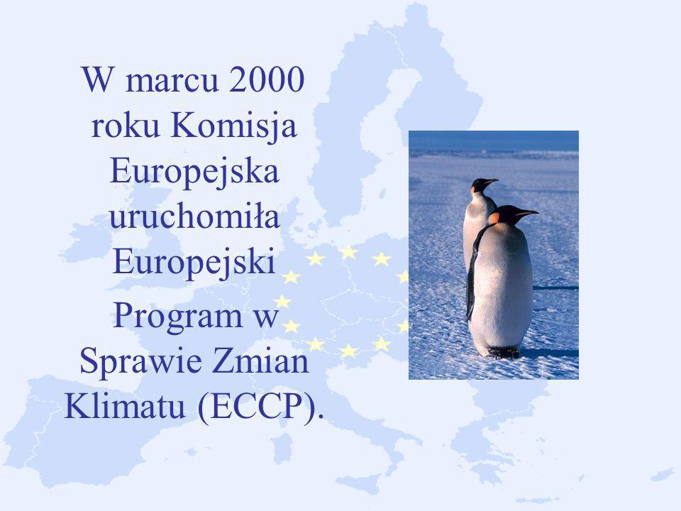 Program w Sprawie Zmian Klimatu (ECCP).