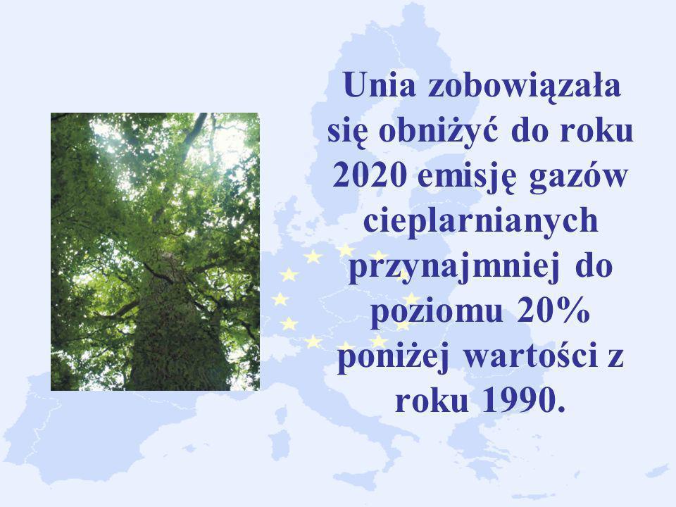 Unia zobowiązała się obniżyć do roku 2020 emisję gazów cieplarnianych przynajmniej do poziomu 20% poniżej wartości z roku 1990.