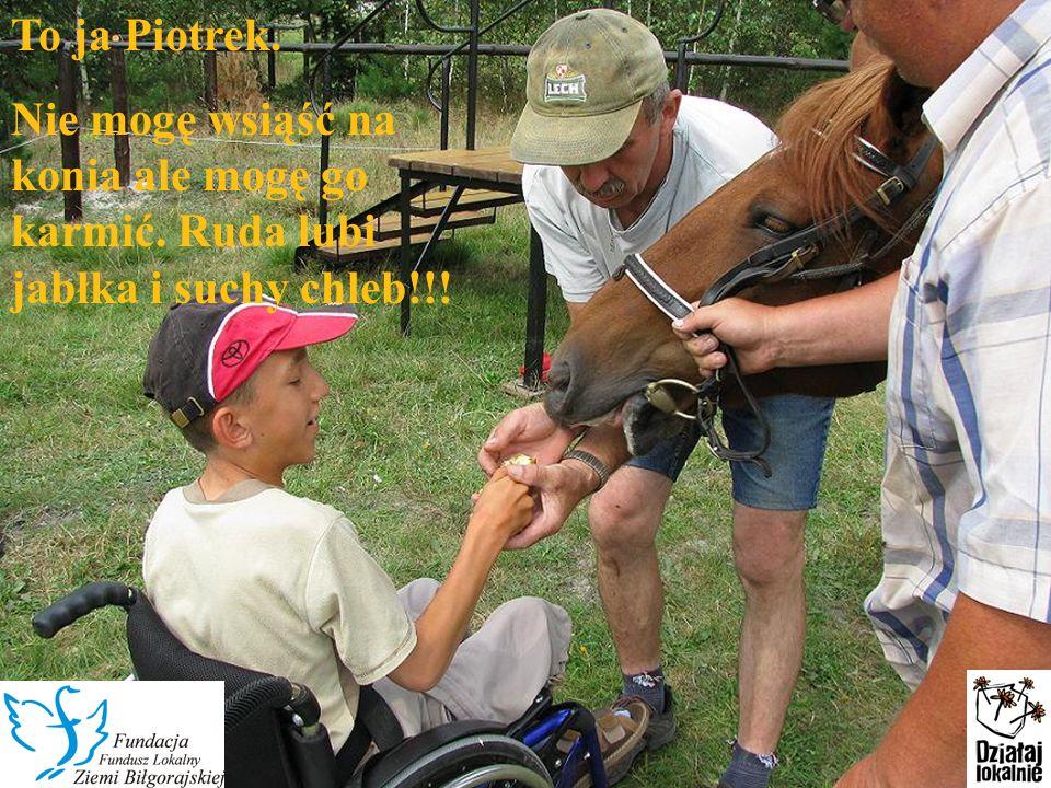 To ja Piotrek. Nie mogę wsiąść na konia ale mogę go karmić. Ruda lubi jabłka i suchy chleb!!!