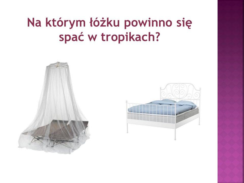 Na którym łóżku powinno się spać w tropikach