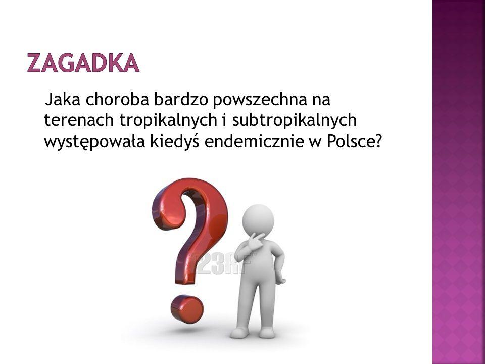 Zagadka Jaka choroba bardzo powszechna na terenach tropikalnych i subtropikalnych występowała kiedyś endemicznie w Polsce