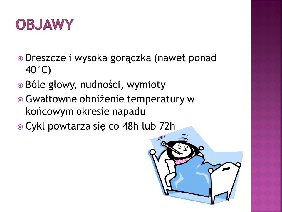 Objawy Dreszcze i wysoka gorączka (nawet ponad 40°C)