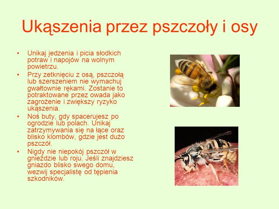 Ukąszenia przez pszczoły i osy