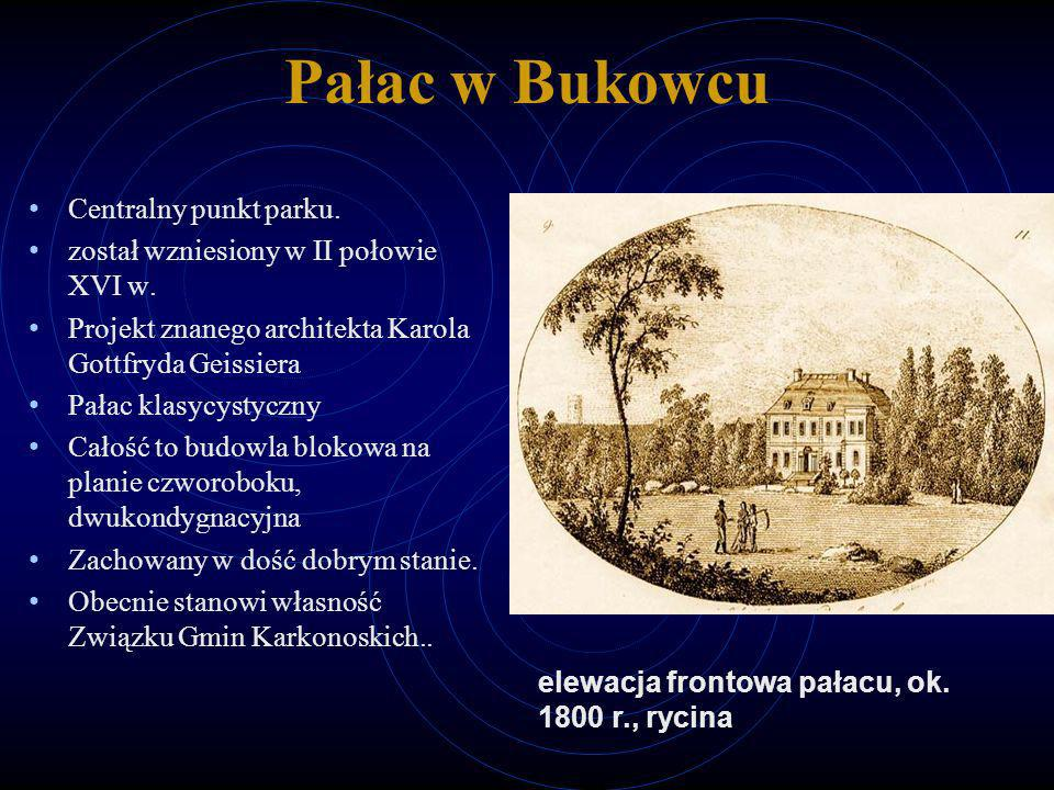 Pałac w Bukowcu Centralny punkt parku.
