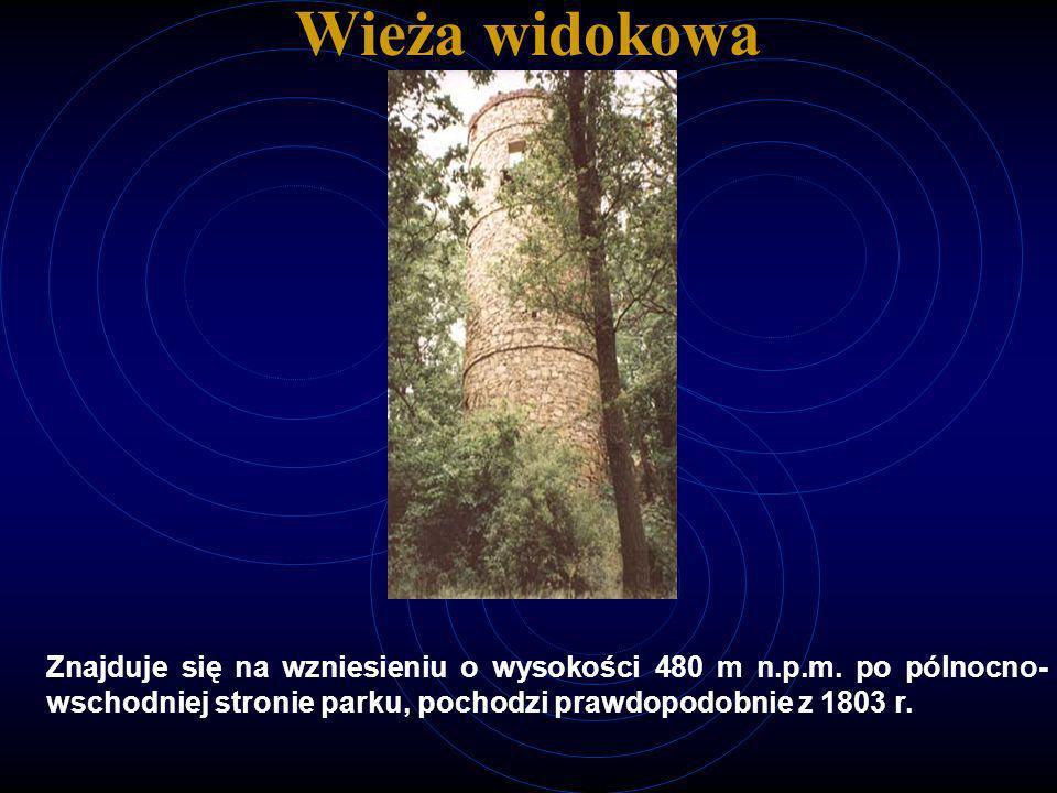 Wieża widokowa Znajduje się na wzniesieniu o wysokości 480 m n.p.m.