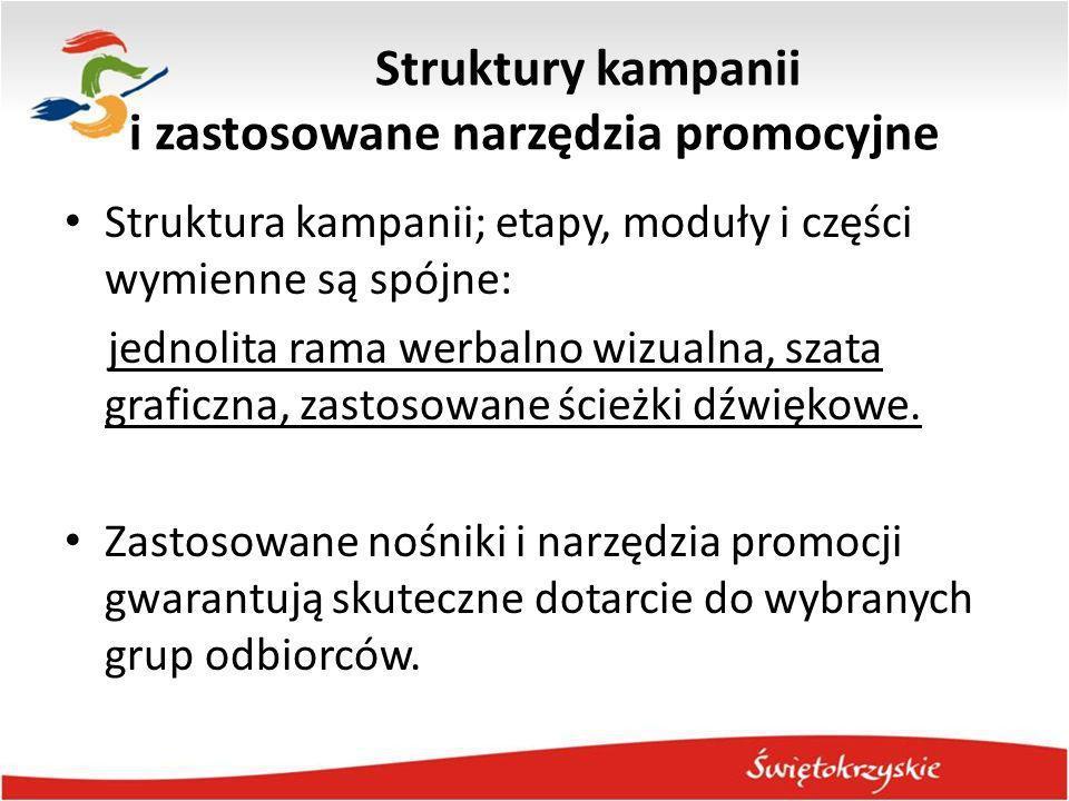 Struktury kampanii i zastosowane narzędzia promocyjne