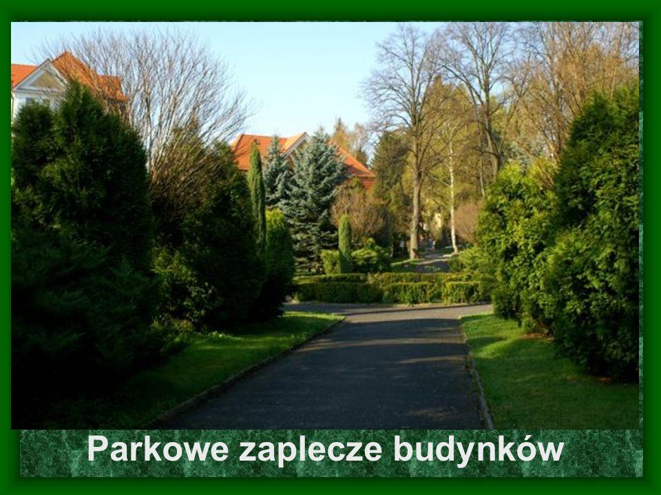Parkowe zaplecze budynków